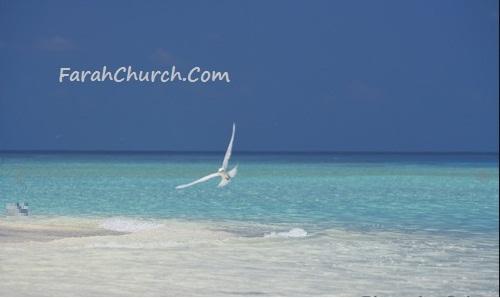 اساسيات الايمان المسيحي