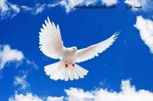 صولحنا مع الله