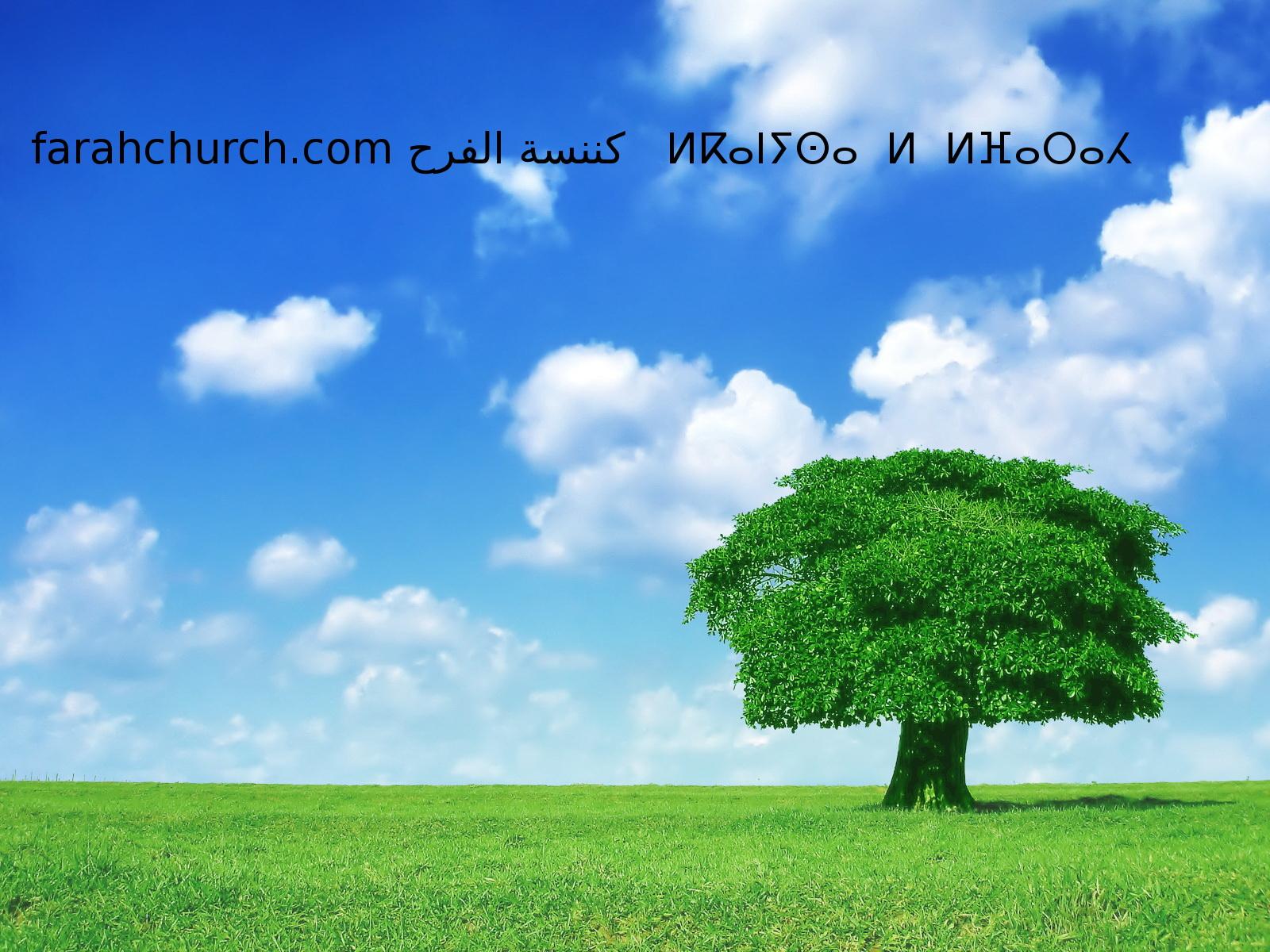 مع المسيح صلبت